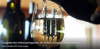 """Portugal é o país produtor de vinho """"mais negligenciado"""". E isso é injusto"""
